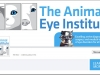 Animal Eye Institute